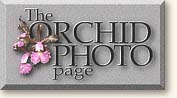 Orchid Photo Page logo